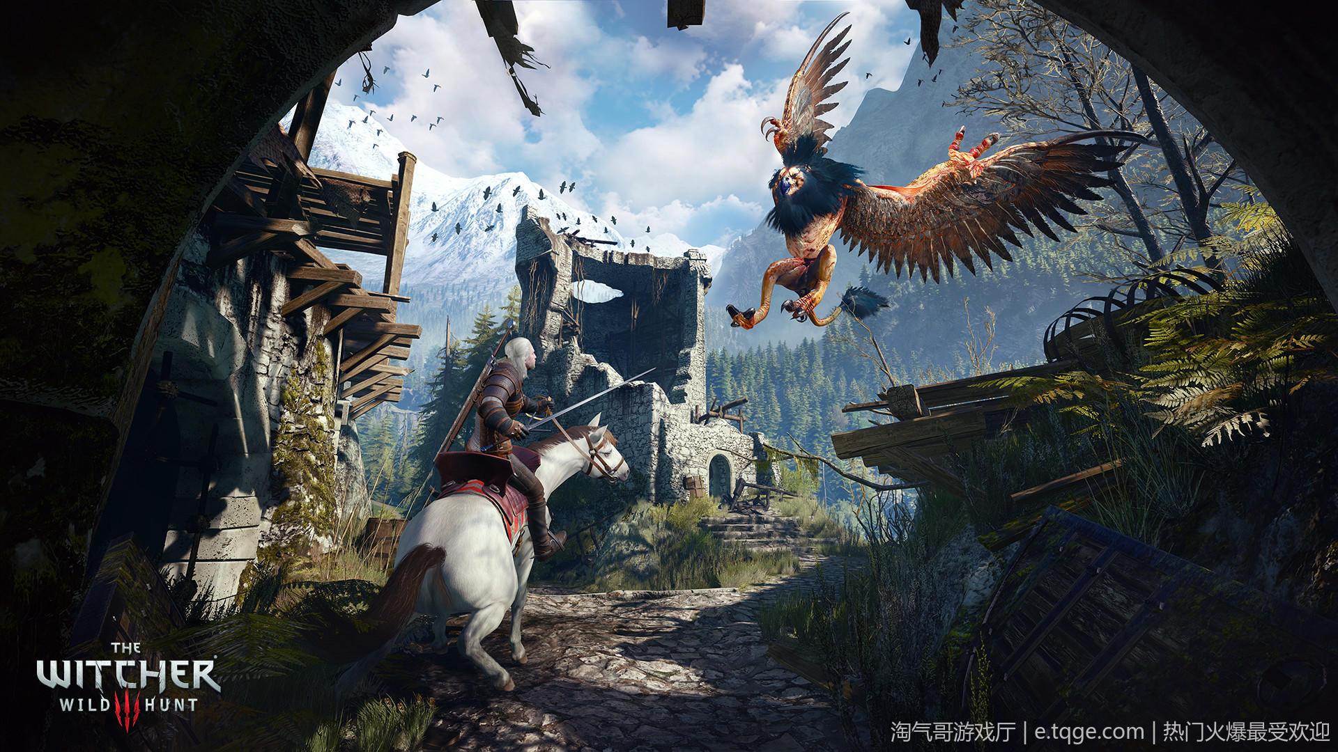 巫师3:狂猎年度版 动作冒险 第1张