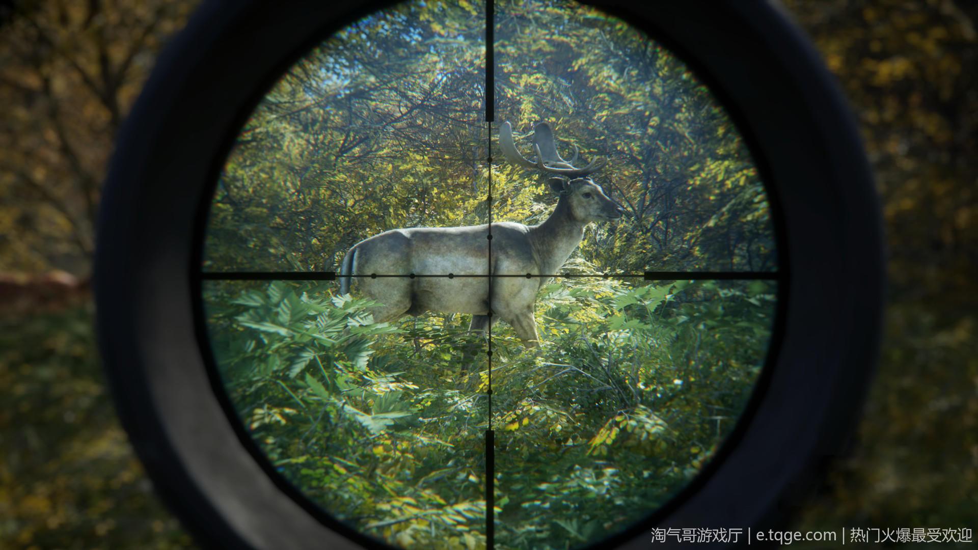 猎人:野性的呼唤/荒野的召唤 动作冒险 第1张