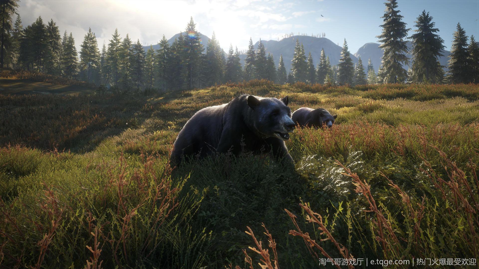 猎人:野性的呼唤/荒野的召唤 动作冒险 第19张