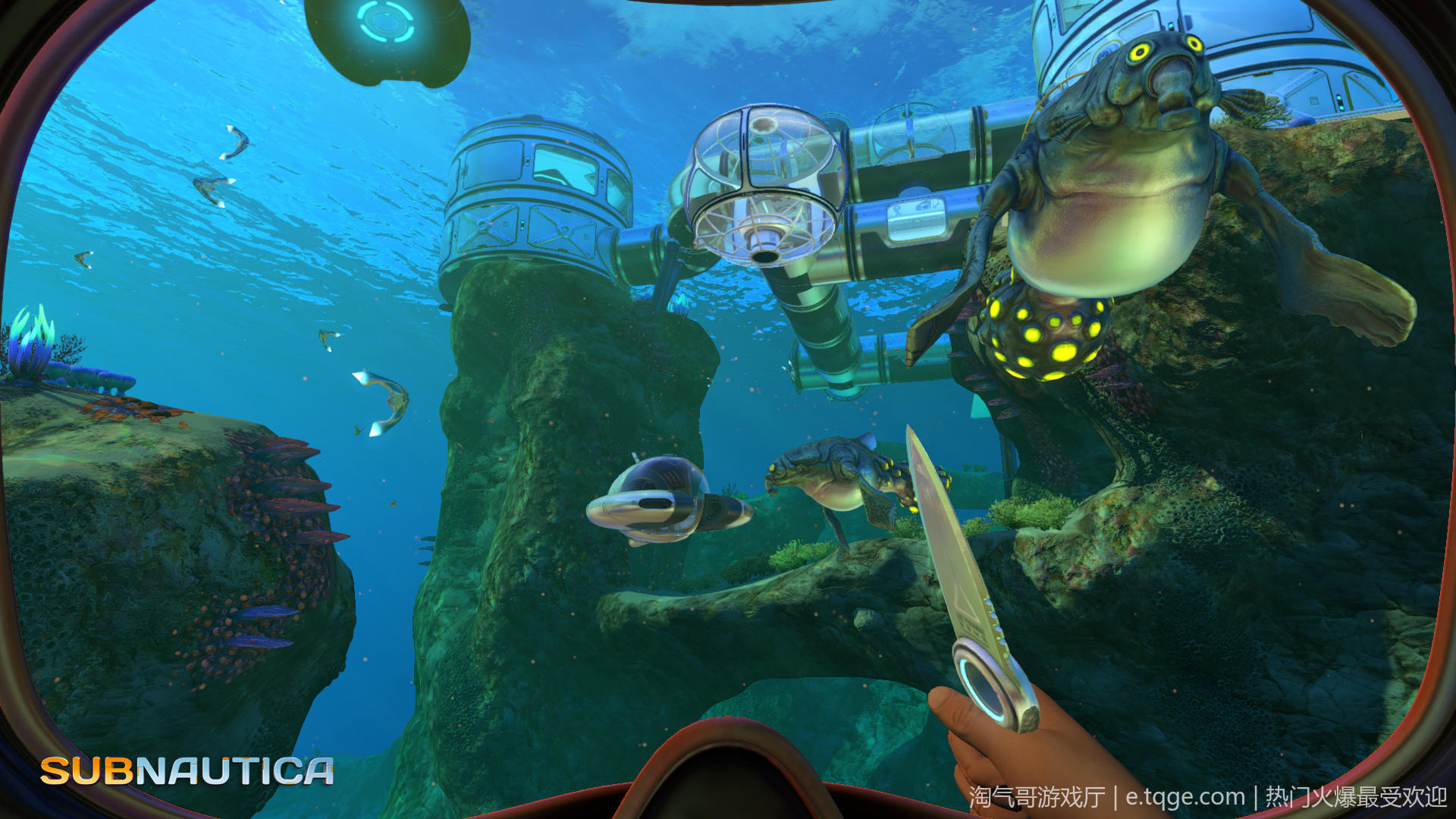 深海迷航/水下之旅/美丽水世界 动作冒险 第8张