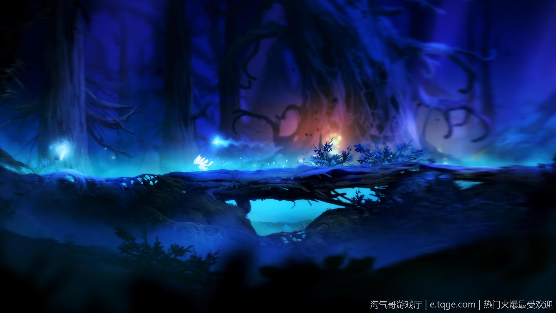 奥日与黑暗森林:终极版/精灵与黑暗森林 动作冒险 第5张