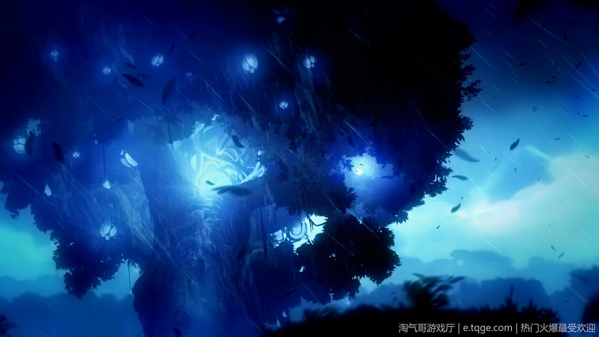 奥日与黑暗森林:终极版/精灵与黑暗森林 动作冒险 第11张