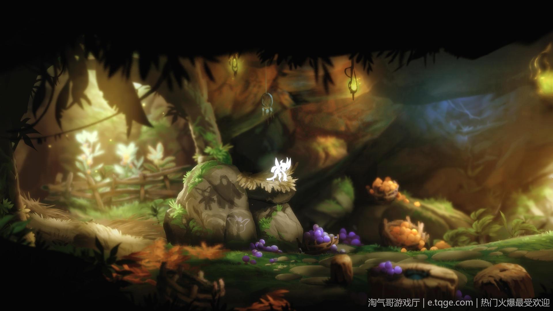 奥日与黑暗森林:终极版/精灵与黑暗森林 动作冒险 第13张