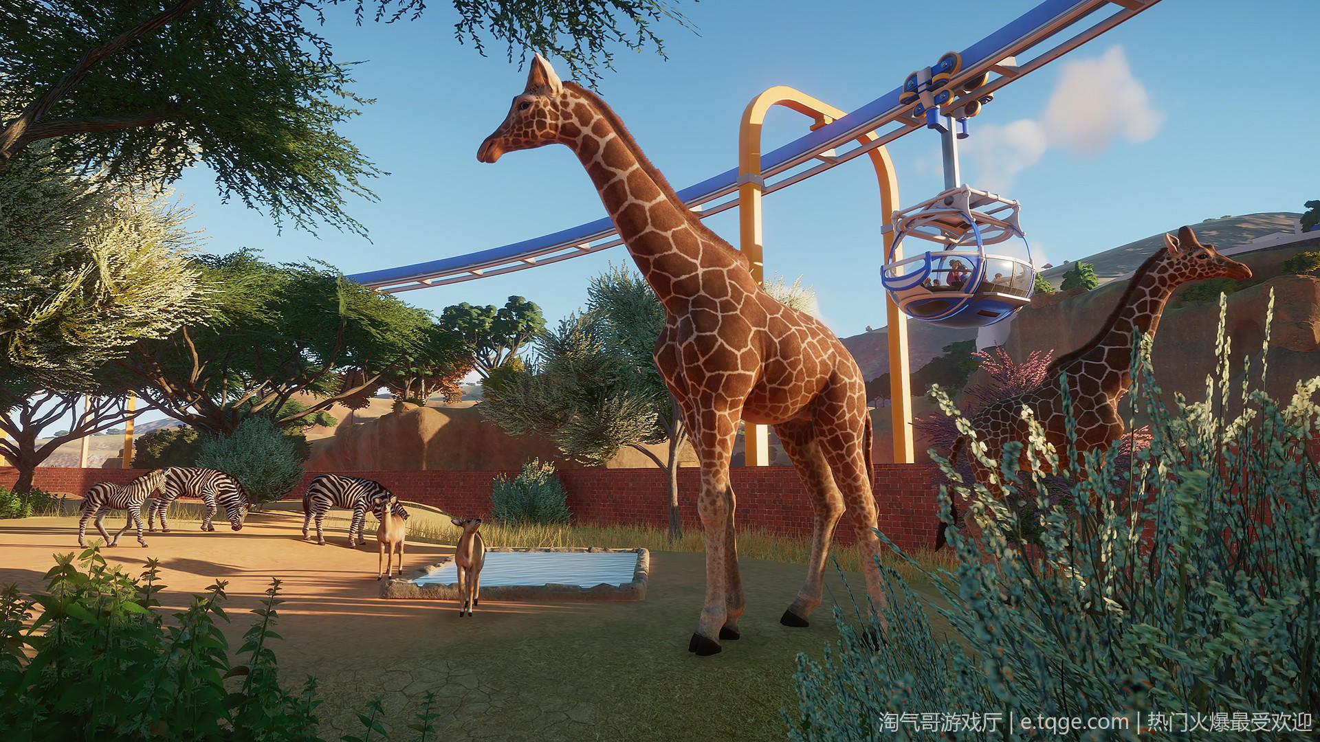 动物园之星/Planet Zoo 模拟经营 第3张