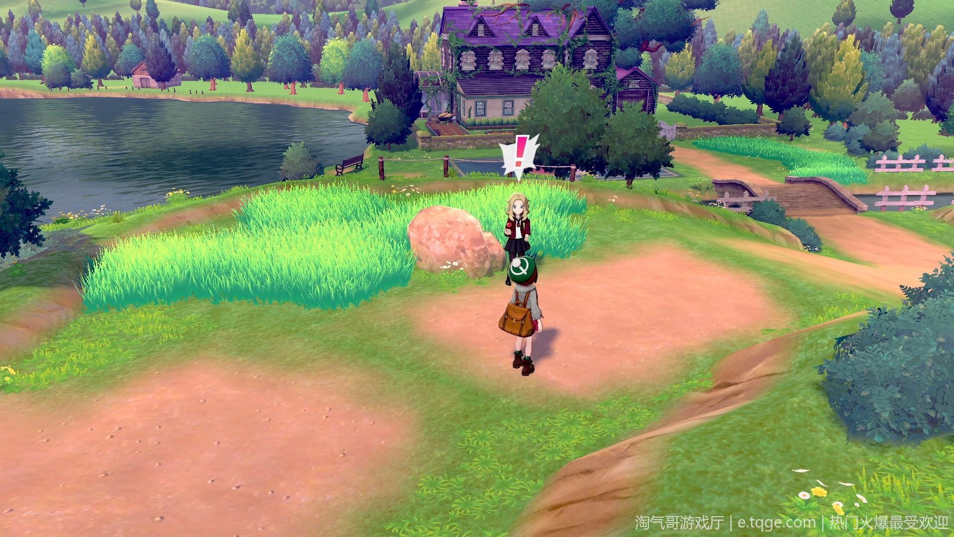 口袋妖怪剑盾/精灵宝可梦剑盾 热门游戏 第2张