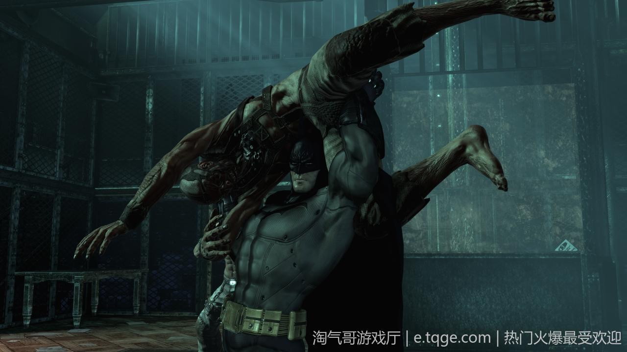 蝙蝠侠之阿卡姆疯人院年度版 动作冒险 第1张
