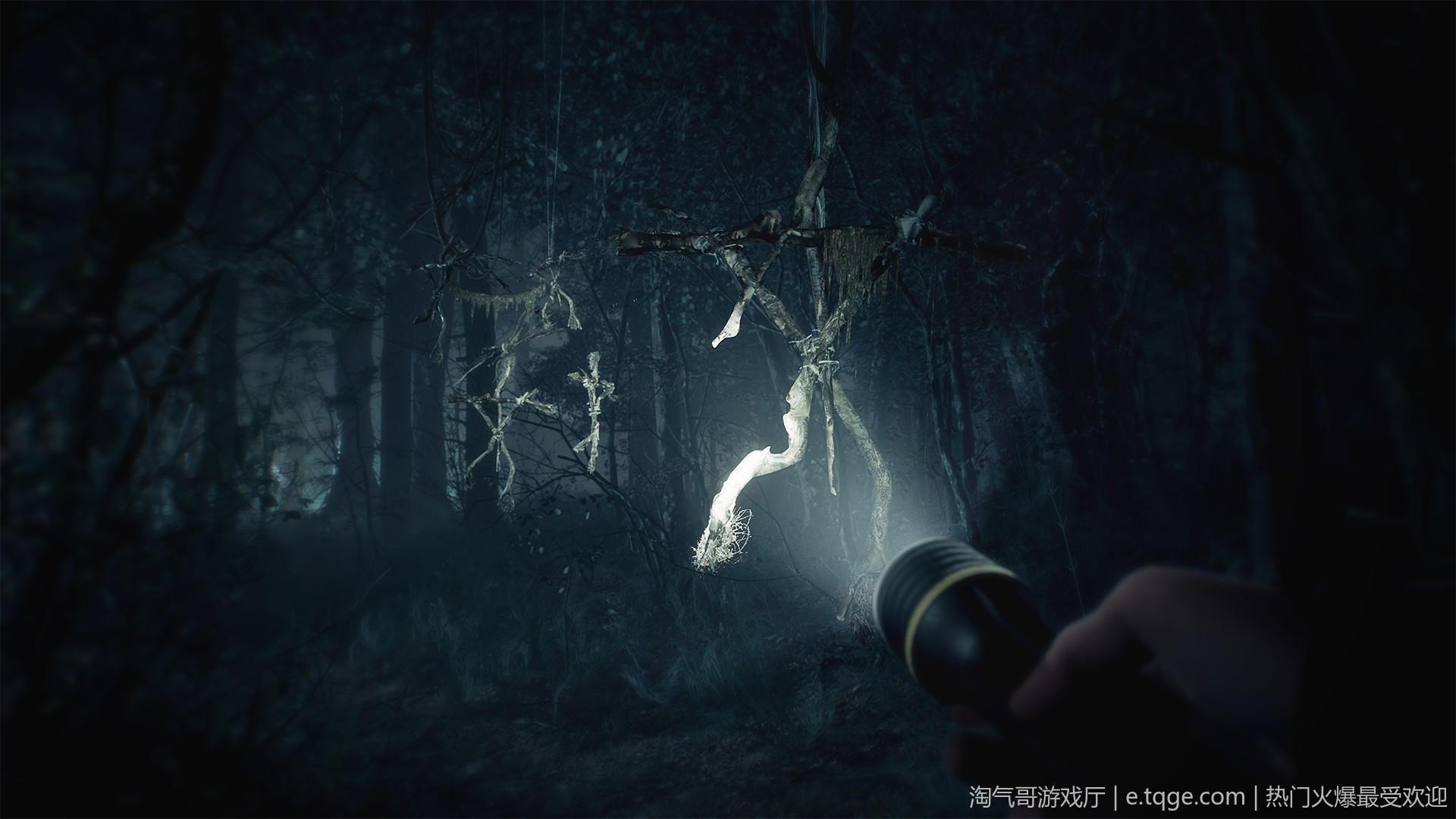 布莱尔女巫 动作冒险 第2张