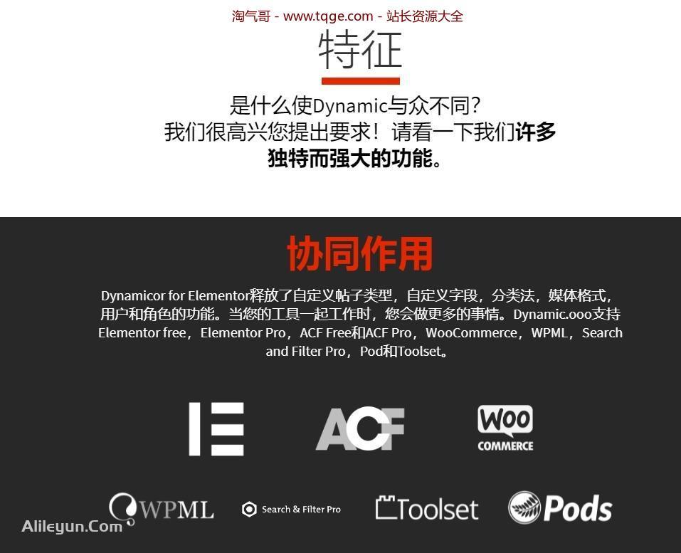 Dynamic Content for Elementor 1.14.5 动态内容插件 WordPress插件 第7张