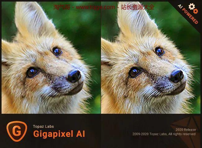 Topaz全家桶-AI图片处理 独立软件 第22张
