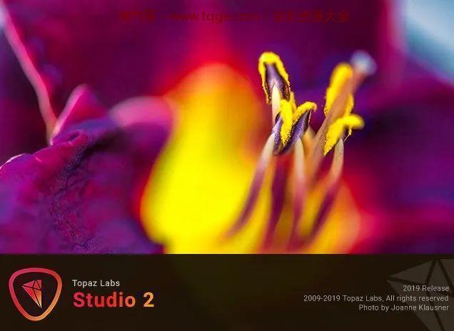Topaz全家桶-AI图片处理 独立软件 第52张