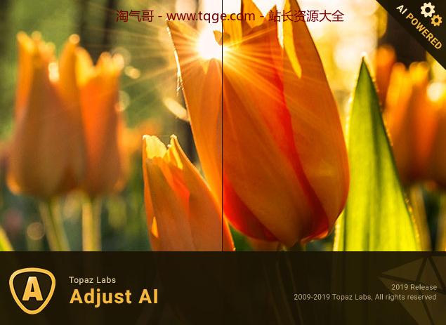 Topaz全家桶-AI图片处理 独立软件 第58张